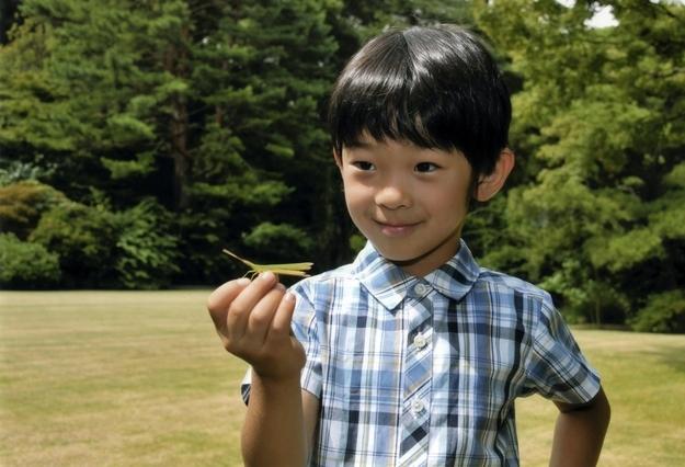 Наследник японского престола Хисахито