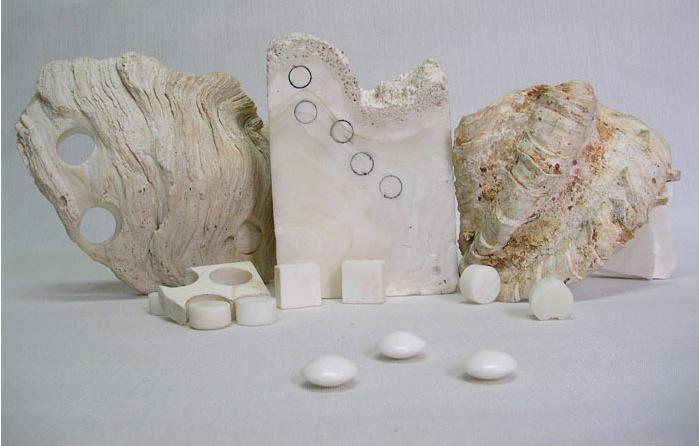 На фотографии образец раковины, а также цилиндрические и кубические заготовки для камней Го